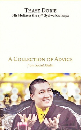 17 Karmapa Collection of Advice bogtitel Rabsel Editions juni 2017